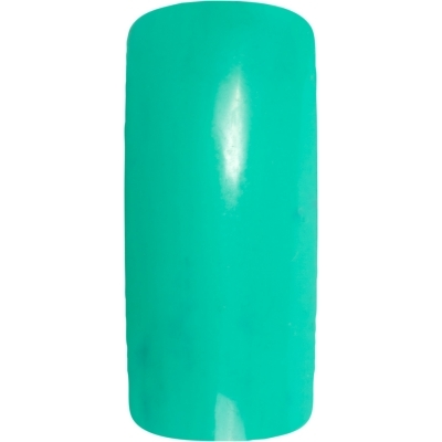 Гель цветной 7 гр. Nail Art Peppermint