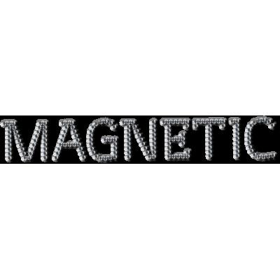 Логотип Magnetic